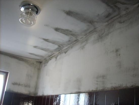 Impresa edile risolve a roma problema condensa impresa - Eliminare condensa in casa ...